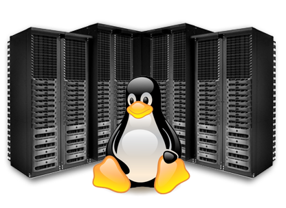 Accentuate your Revenue Generation with Linux Reseller Hosting