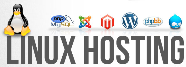 Top Considerations In Choosing The Best Shared Hosting
