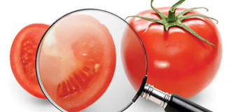 Presence of antibiotics in food products is becoming a food safety concern