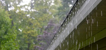 Rainfall Rain gutter Servicing – Foliage Secure, Protective Screen